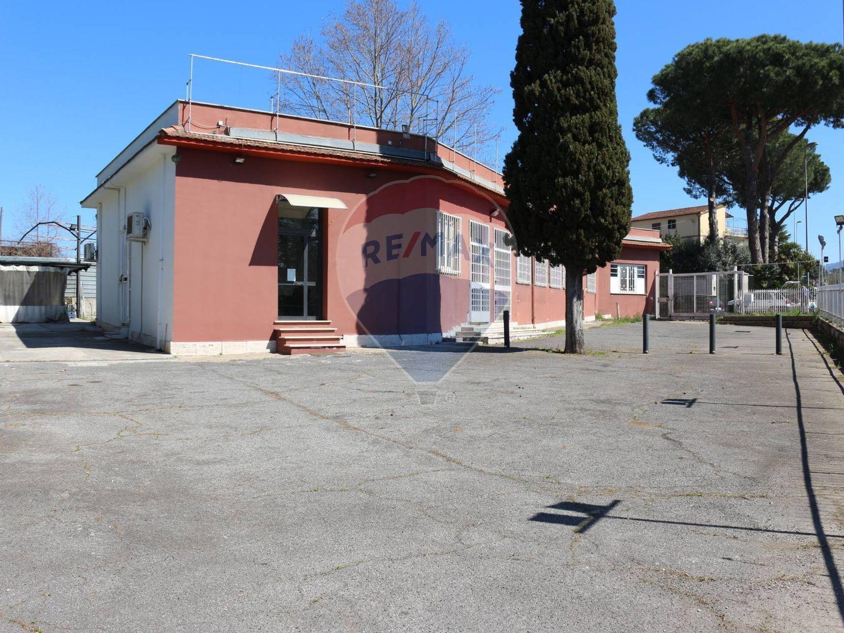 Commerciale Altro Vermicino, Frascati, RM Affitto - Foto 3