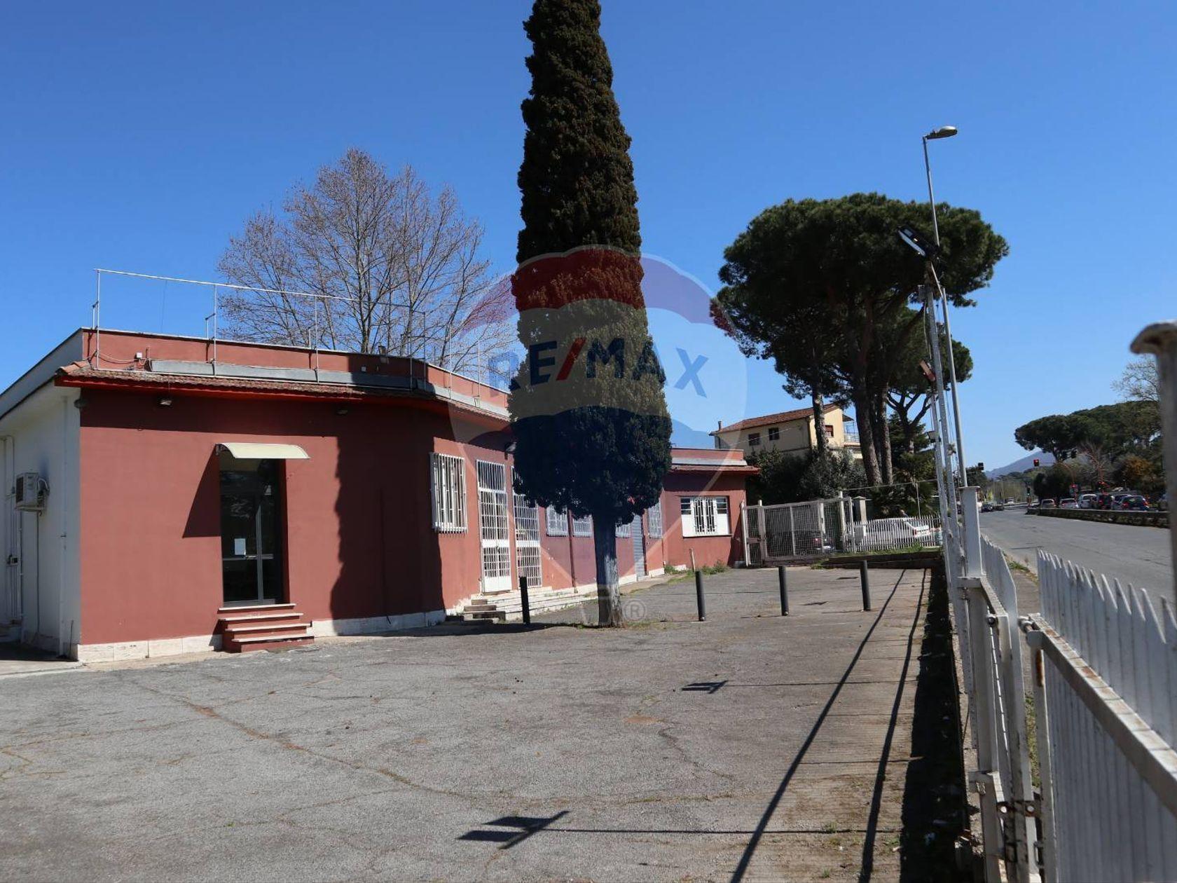 Commerciale Altro Vermicino, Frascati, RM Affitto - Foto 16