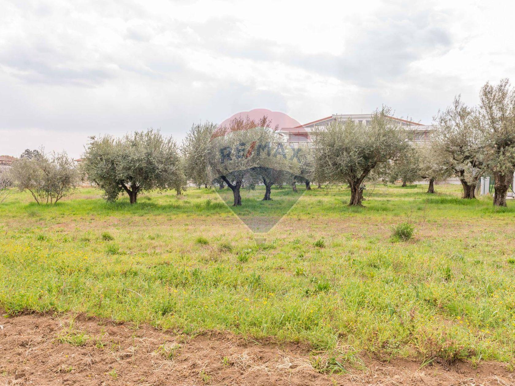 Terreno Roma - Castelverde - Villaggio Prenestino, Roma, RM Vendita - Foto 7