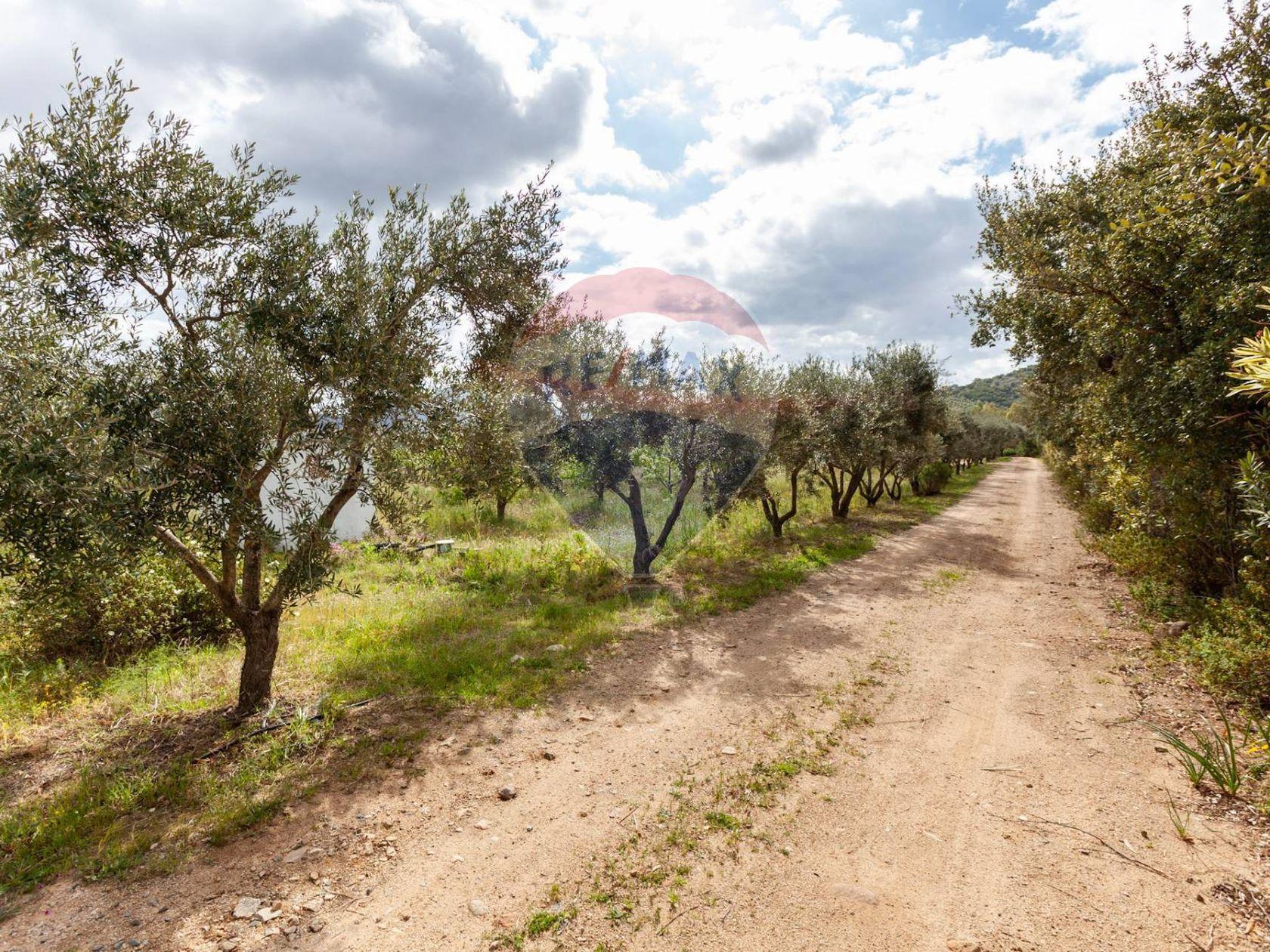 Cascina/Casale Tuerra I, San Vito, CA Vendita - Foto 10