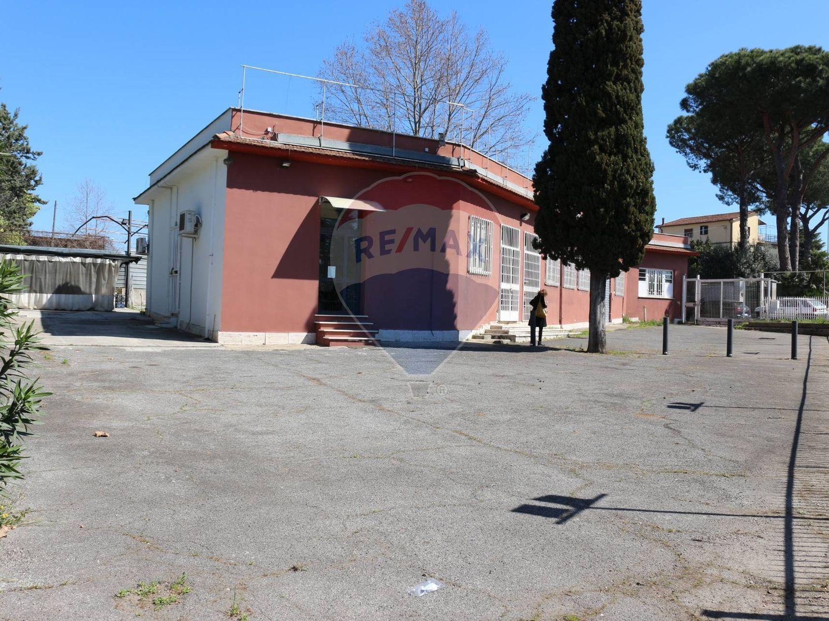 Commerciale Altro Vermicino, Frascati, RM Affitto - Foto 4