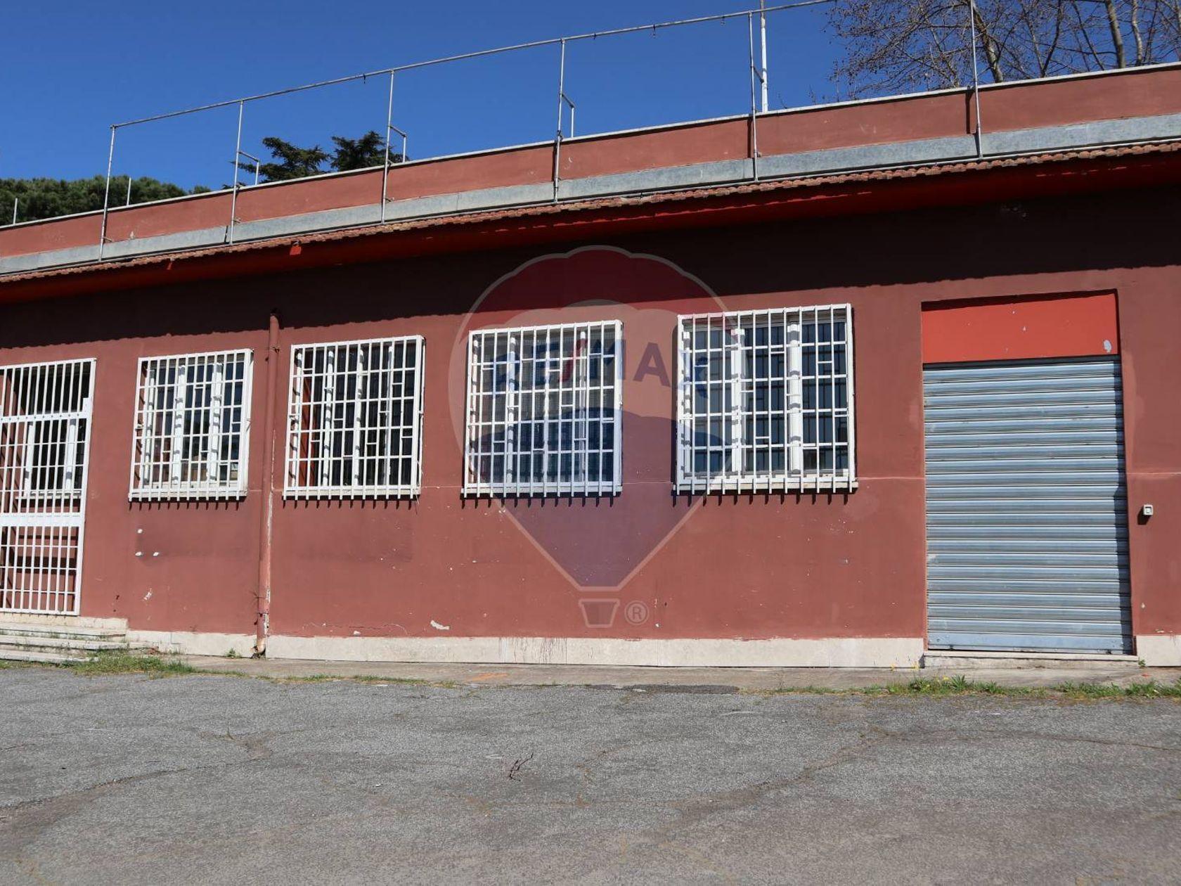 Commerciale Altro Vermicino, Frascati, RM Affitto - Foto 9
