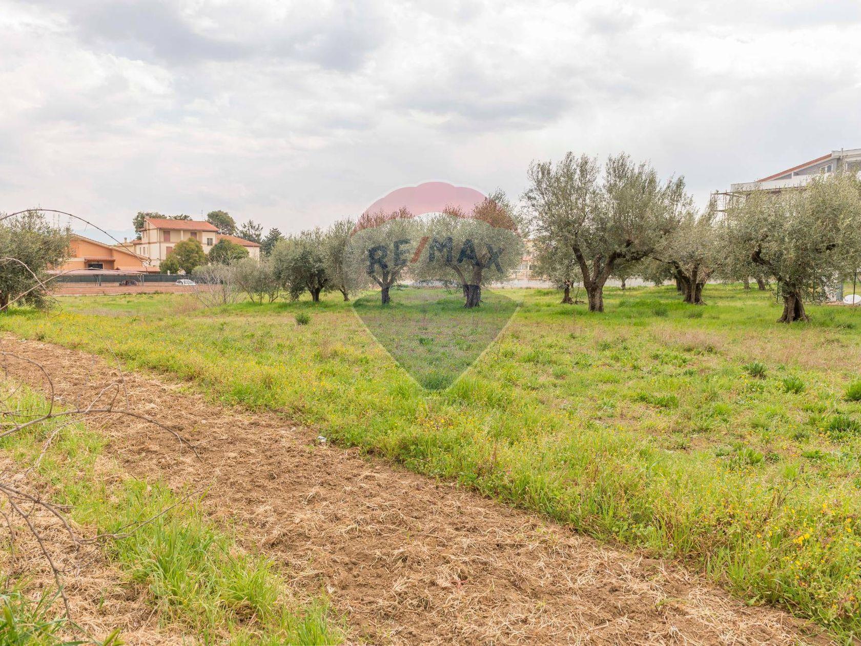 Terreno Roma - Castelverde - Villaggio Prenestino, Roma, RM Vendita - Foto 9