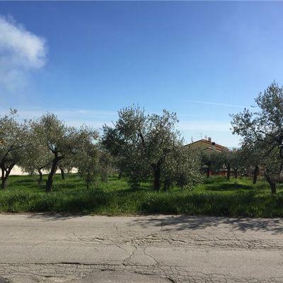 Terreno Edificabile Lanciano, CH Vendita - Foto 4